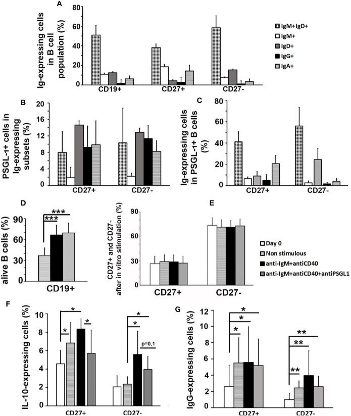 PSGL-1 signaling inhibits in vitro activation of human peripheral B cells. (A) Relative frequencies of the different immunoglobulin (Ig)-expressing cell subsets in human total B cells (CD19 + ) and in the CD27 + and CD27 − B cell subpopulations. (B) Percentage of PSGL-1 + cells in the different Ig- expressing subsets of CD27 + and CD27 − B cells. (C) Relative frequencies of the different Ig- expressing cell subsets in the PSGL-1 + B cell subpopulation. (D) Percentage of surviving B cells after 72 h in culture: non-stimulated, activated with anti-IgM+anti-CD40 antibodies or activated with anti-IgM+anti-CD40+anti-PSGL-1 antibodies. (E) Relative frequency of CD27 + and CD27 − B cells in the total B cell population after 72 h in culture: non-stimulated, activated with anti-IgM+anti-CD40 antibodies or activated with anti-IgM+anti-CD40+anti-PSGL-1 antibodies. (F, G) Percentage of IL-10 + (F) and IgG + (G) cells in CD27 + and CD27 − B cells after 72 h in culture: non-stimulated, activated with anti-IgM+anti-CD40 antibodies or activated with anti-IgM+anti-CD40+anti-PSGL-1 antibodies. Bars represent the mean+standard deviation. *p