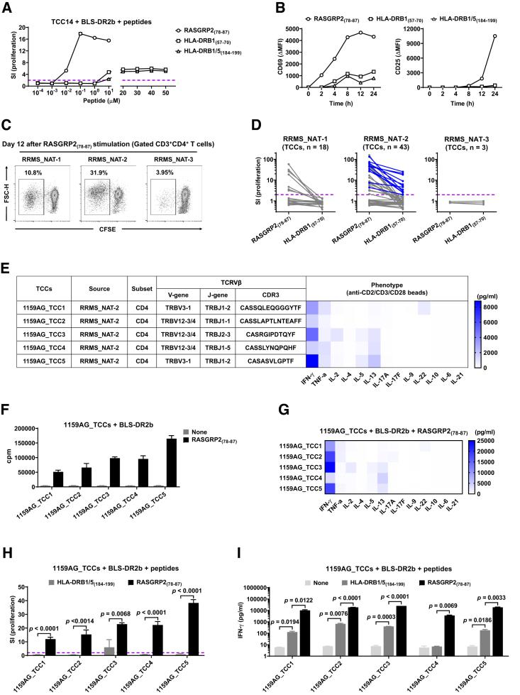Responses of Autoreactive CD4 + TCCs to RASGRP2 and HLA-DR-SPs (A) Dose-response curves of TCC14 to RASGRP2 (78–87) and HLA-DR-SPs. (B) Irradiated BLS-DR2b cells were incubated with peptides for 12 h and then co-cultured with TCC14. Shown are expression levels of CD69 and CD25 on TCC14 at different time points after co-culture. ΔMFI indicates the mean fluorescence intensity (MFI) value above the no-peptide control. (C–E) CD45RA − PBMCs from 3 HLA-DR15 + RRMS_NAT patients were stimulated with RASGRP2 (78–87) to generate TCCs. Proliferation of memory CD4 + T cells was analyzed on day 12 (C). Acquired TCCs were co-cultured with irradiated autologous PBMCs as APCs and stimulated with RASGRP2 (78–87) or DRB1 (57–70) , and proliferation was detected on day 3. The TCCs responding to RASGRP2 (78–87) and DRB1 (57–70) are highlighted in blue (D). Five new 1159AG_TCCs that responded to RASGRP2 (78–87) and DRB1 (57–70) were generated from RRMS_NAT-2. Their corresponding TCRVβ sequence and functional phenotype are shown (E). (F) Restriction of the RASGRP2 (78–87) -specific 1159AG_TCCs was tested with irradiated BLS-DR2b cells and stimulation with RASGRP2 (78–87) . (G) Th1/Th2/Th17-related cytokines in supernatants of 1159AG_TCCs after co-culture with irradiated BLS-DR2b cells and stimulation with RASGRP2 (78–87) for 3 days. (H and I) 1159AG_TCCs were co-cultured with irradiated BLS-DR2b cells and stimulated with RASGRP2 (78–87) or DRB1/5 (184–199) for 3 days. Shown is proliferation of 1159AG_TCCs (H) and IFN-γ in supernatants (I). Data are expressed as mean ± SEM, and p values were determined by unpaired t test. See also Figures S4 and S5 and Table S1 .
