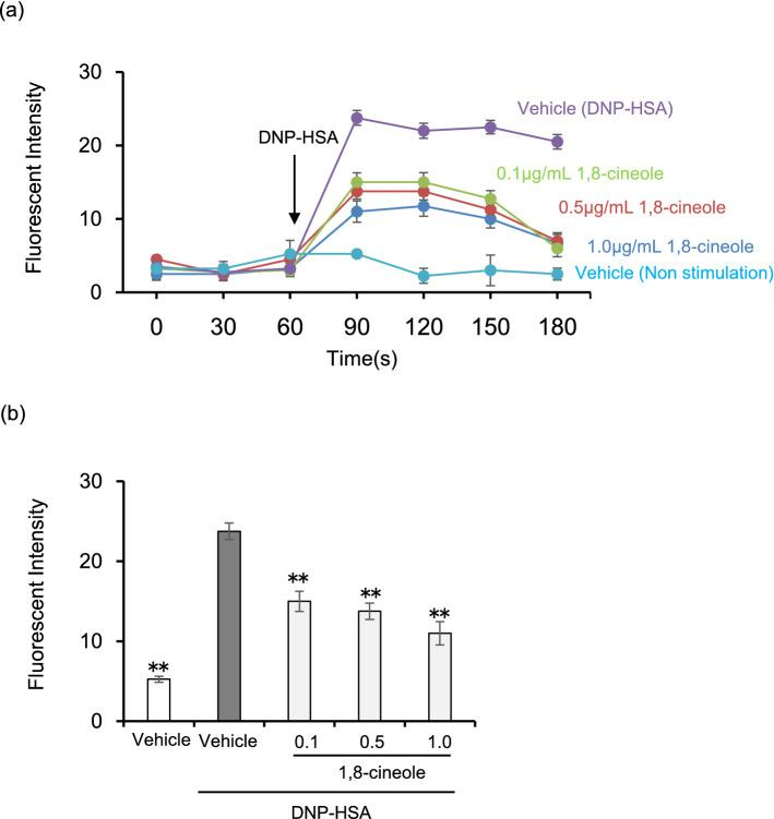 1,8-cineole suppresses the elevation of intracellular Ca 2+ concentration. BMMCs sensitised with anti-DNP IgE were incubated in medium containing Fluo 4-AM. BMMCs were treated with various concentrations of 1,8-cineole and stimulated with DNP-HSA 60 s after initiating the monitoring of fluorescence intensity. ( a ) Time course of intracellular Ca 2 + concentration in BMMCs. Data are displayed as mean ± SEM (N = 5). ( b ) Relative fluorescence intensity 60 s after DNP-HSA stimulation. Data are displayed as mean ± SEM (N = 5). Statistical significance was assessed using Dunnett's test (** P