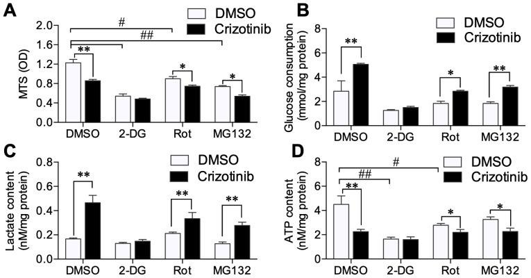Effect of crizotinib treatment on A549 cell metabolism in conjunction with various inhibitors. After pretreatment with <t>MG132,</t> 2-DG and rotenone, the effects of 1 µM crizotinib on (A) cell viability, (B) glucose consumption, (C) lactate content and (D) ATP content were determined in A549 cells. *P
