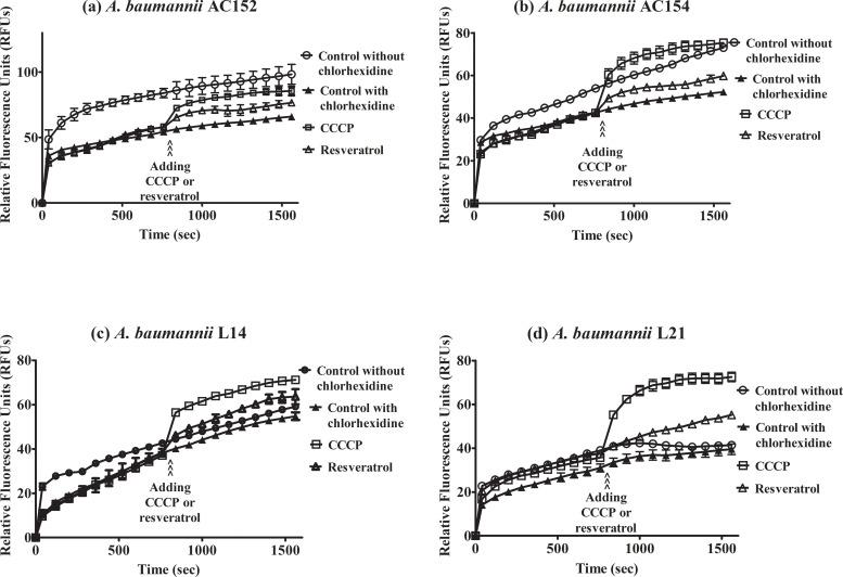 Effect of resveratrol in the presence of chlorhexidine on ethidium bromide accumulation in A . baumannii strain AC152 (a), AC154 (b), L14 (c), and L21 (d). The fluorescence of ethidium bromide was measured in the presence of glucose with (filled triangles) or without (open circles) chlorhexidine (8 mg/L) and after addition of CCCP (open squares) or resveratrol (open triangles). Relative fluorescence units were plotted with error bars representing standard deviations. All experiments were performed in triplicate.