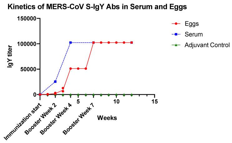 Kinetics of serum and egg yolk <t>anti-MERS</t> <t>COV-S</t> IgY antibodies response of chickens after immunization with MERS COV-S recombinant protein compared with the adjuvant-immunized chicken (adjuvant control). Each week is represented by a pool of egg yolks of individual chicken in each group (S1-immunized and adjuvant-immunized).