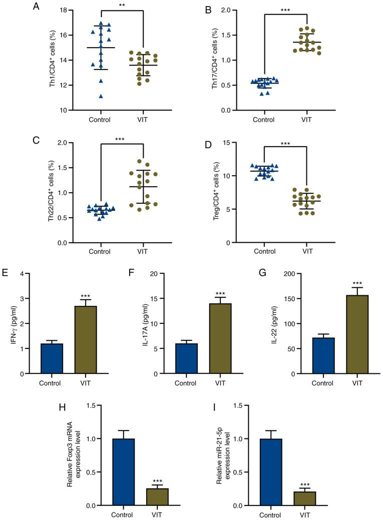 Imbalance of T effector/Treg cells and dysregulation of miR-21-5p in patients with VIT. Percentages of (A) Th1, (B) Th17, (C) Th22 and (D) Treg cells in CD4 + T cells of peripheral blood mononuclear cells in patients with VIT and healthy controls (n=15 for each group) were measured via flow cytometry. Protein levels of (E) IFN-γ, (F) IL-17A and (G) IL-22 in the peripheral blood of patients with VIT and healthy controls were measured via enzyme-linked immunosorbent assay. Relative expression levels of (H) Foxp3 and (I) miR-21-5p in the peripheral blood of patients with VIT and healthy controls were measured via reverse transcription-quantitative PCR. GAPDH and U6 were used as the internal controls, respectively. **P