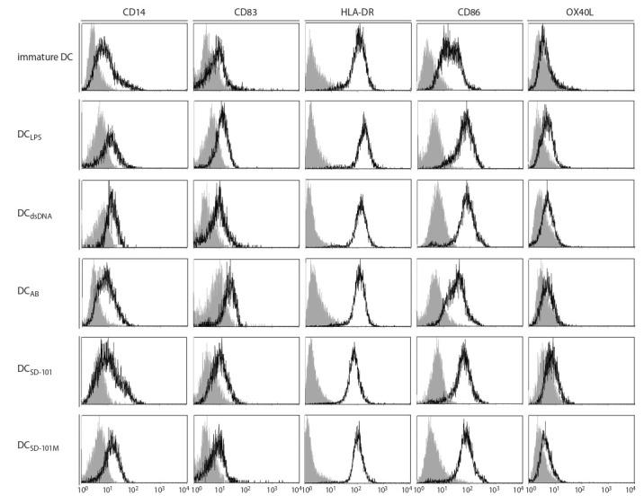 Phenotypic analysis of IFN-DC generated in vitro with different stimuli. Immature IFN-DC were cultured with different stimuli for 24 h followed by flow cytometry analysis of surface molecules CD14, CD83, <t>HLA-DR,</t> <t>CD86,</t> OX40L. Figures show flow cytometry histograms representing the expression of studied markers (bold-line histograms) and matched isotype controls (gray-filled histograms).