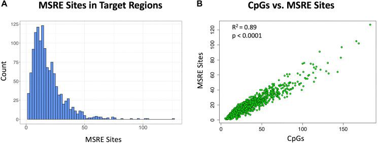 Methylation sensitive restriction sites in target cDMRs. Five MSREs are considered here: HhaI, HpaII, HpyCH4IV, AciI and BstUI. ( A ) Histogram of the number of MSRE sites in the target regions. ( B ) Scatterplot of the number of MSRE sites versus the number of CpGs in the target regions showing a linear relationship (R 2 = 0.89, p