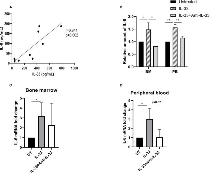 IL-33 induces IL-6 expression and secretion in primary AML cells. (A) The relationship between IL-33 and IL-6. Spearman rank correlation analysis was performed to evaluate the correlation of serum IL-33 with IL-6 in patients with AML at diagnosis (n = 10). (B) PBMCs and BMMCs from patients diagnosed with AML were incubated for 72 h with IL-33 (100 ng/ml) or combined with anti-IL-33 (100 ng/ml). CBA was used to simultaneously measure IL-6 in supernatants from cell cultures, and plotted as fold change compared with untreated samples. (C, D) RNA/cDNA expression of cells from (B) was analyzed using quantitative real-time PCR using Actb as a reference control. Data are plotted as relative gene expression compared with the untreated control. A significant difference in the mean IL-6 mRNA expression between compared with untreated cells was found in both BM and PB samples. n≥3; * P