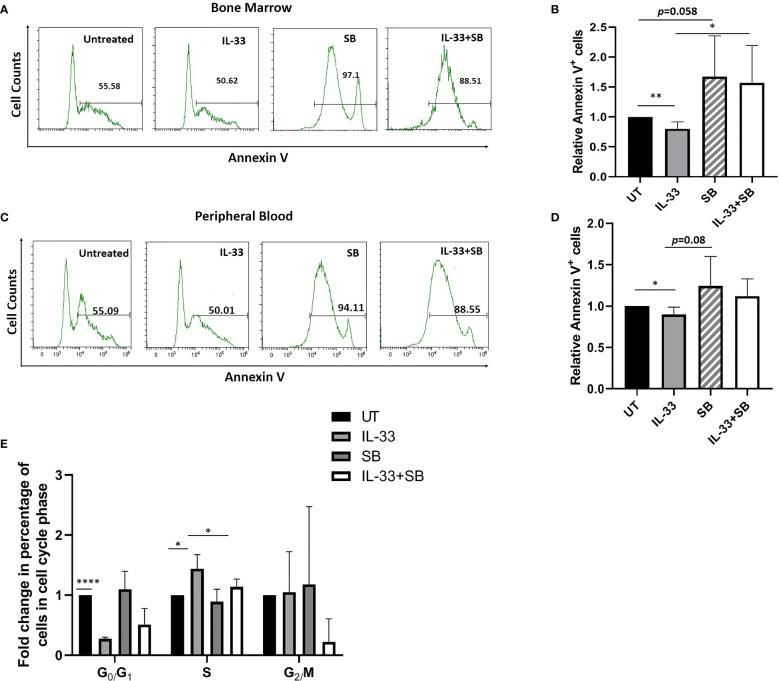 IL-33 promotes cell survival via p38 MAPK pathway in primary AML samples. BMMCs (A, B) and PBMCs (C, D) from pediatric patients with AML were cultured with IL-33 (100 ng/ml), or SB (20 µM) alone, or in combination for 72 h, and apoptosis was measured by Annexin V staining. Bar graphs show the relative Annexin V staining of leukemia cells as compared to the untreated cells. (E) BMMCs from AML patients were analyzed for cell cycle status. Bar graph shows the relative percentage of leukemia cells in the indicated phase of the cell cycle after culture for 72 h in the presence of IL-33 (100 ng/ml), SB (20 µM) or in combination, compared to the untreated cells. n≥3 ; * P