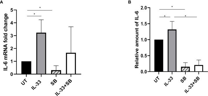 p38 MAPK pathway participates in IL-33-stimulated IL-6 expression and release. BMMCs from pediatric patients with AML were cultured with IL-33 (100 ng/ml), or SB (20 µM) alone, or in combination for 72 h. (A) RNA/cDNA expression of cells was analyzed using quantitative real-time PCR using Actb as a reference control. Data are plotted as relative gene expression compared with the untreated control. (B) CBA was used to simultaneously measure IL-6 in supernatants from cell cultures, and plotted as fold change compared with untreated samples. n≥3; *P