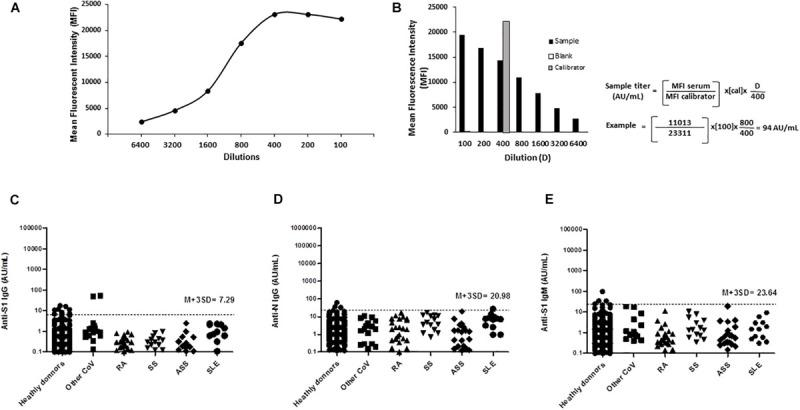 Detection, titration, and cross-reactivity of anti–SARS-CoV-2 Spike S1, nucleocapsid N protein IgG, and anti–SARS-CoV-2 Spike S1 IgM antibodies by ALBIA-IgG-S1/N and ALBIA-IgM-S1. (A) A calibration curve was obtained after serial dilutions of the calibrator, i.e., one highly positive sample. A plateau of MFI was reached for dilutions 1:400 or lower. (B) Calculation of antibody titer by reference to the MFI value of the calibrator (gray bar) used at a 1:400 dilution in the assay and its level arbitrarily set to 100 arbitrary units (AU)/mL. The assay was first performed using a 1:100 screening dilution of the serum. In case the sample's MFI at 1/100 dilution was higher than 70% of the calibrator's MFI, further dilutions were performed, and the first dilution yielding an MFI inferior to 70% of calibrator MFI was retained for calculation. An example is given: at 1:100 dilution, the MFI was higher than 70% of the calibrator's MFI (23,311 × 0.7 = 16,318), requiring a 1/800 dilution for computing the titer, i.e., 94 AU/mL anti-S1 IgG level. Specificity toward non–COVID-19 patients: (C) anti-Spike S1 and (D) anti-N IgG, IgM, and (E) anti-Spike S1 IgM antibody reactivity in patients with different conditions: PCR-confirmed infection with other CoV (17 sera from 13 patients; HKU1, n = 3; OC43, n = 11; NL63, n = 3). RA, rheumatoid arthritis; SS, Sjögren syndrome; ASS, antisynthetase syndrome; SLE, systemic lupus erythematosus.