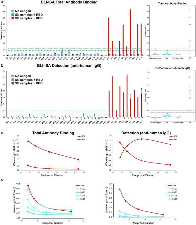 BLI-ISA evaluation of SARS-CoV-2 spike RBD reactivity of pre-pandemic and convalescent plasma. ( a , b ) Single-dilution BLI-ISA to evaluate the presence of RBD-reactive human antibodies in the pre-pandemic seronegative (SN, cyan) and convalescent seropositive (SP, red) samples compared to no-antigen controls (grey). The assays were performed with plasma at a 1:8 dilution. Bars and dots represent the mean of biological duplicates, and error bars represent one standard deviation from the mean. Blue and green dashed lines represent the mean of seronegative samples plus 3 and 5 standard deviations, respectively. ( a ) The Total Antibody Binding signal is measured when RBD-biotin-loaded SA biosensors are dipped into plasma samples. ( b ) The Detection signal is measured when RBD-biotin-loaded SA biosensors that had been dipped into plasma are subsequently dipped into colloidal gold-conjugated anti-human IgG. ( c ) Dilution series BLI-ISA from representative strong (SP7) and moderate (SP8) seropositive samples. ( d ) Dilution series BLI-ISA from the weakest seropositive sample (SP3) compared to seronegative plasma samples.
