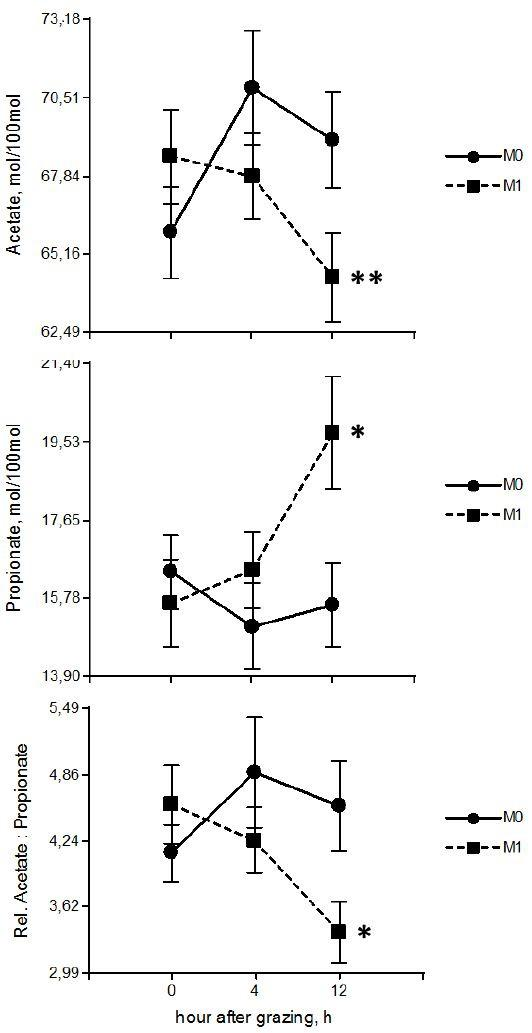 Effect (mean ± SEM) of treatment x hour after grazing interaction on the VFA proportion. The proportion of acetate and propionate and the acetate: propionate ratio values presented expresses the average of the three sampling days (0, 40 and 77). Samples were taken at three times during the sampling day (0, 4 and 12 h after grazing). M1 = with monensin and M0 = without monensin. *P