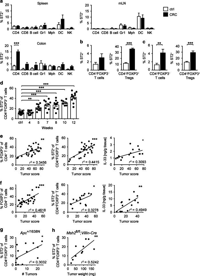 ST2 is preferentially upregulated on CD4 + FOXP3 + Tregs in intestinal tumors. Mice were treated with AOM/DSS (CRC; black bars) or left untreated (ctrl; white bars), and immune cells from spleen, mesenteric lymph nodes (mLN), or colon were analyzed by flow cytometry. a Frequencies of ST2-positive cells were measured among CD4 + T cells, CD8 + T cells, B220 + B cells, GR1 + granulocytes, F4/80 + CD11c int/− macrophages (Mph), CD11c + F4/80 − dendritic cells (DC) and CD335 + NK cells, respectively ( n = 7–8 BALB/c mice per group). Frequencies of ST2-positive cells were measured among FOXP3 − (left panel) or FOXP3 + (right panel) CD4 + T cells from b BALB/c ( n = 15–22 mice per group) or c C57BL/6- Foxp3 /RFP mice ( n = 10–16 mice per group). d Frequencies of ST2 + FOXP3 + Tregs were measured in CRC lesions of BALB/c mice at the indicated time points during AOM/DSS treatment ( n = 26 for ctrl and n = 7–11 for CRC mice per time point). FOXP3 + Treg frequencies (left panel), ST2-expressing FOXP3 + Treg frequencies (middle panel), or IL-33 protein expression (right panel) in colon were correlated with tumor score in e BALB/c ( n = 16-28) or f C57BL/6- Foxp3 /RFP ( n = 14–31) mice. g Alternatively, Apc +/1638N mice ( n = 13) were analyzed at different ages and frequencies of ST2-expressing FOXP3 + Treg were correlated with tumor numbers in the colon. h Msh2 fl/fl ; Villin-Cre mice ( n = 11) were analyzed 269–342 days after birth and frequencies of ST2-expressing FOXP3 + Treg were correlated with tumor weight in the small intestine. Data are mean ± SEM and were pooled from a , h two, b , c four, d three, e 4–5, f 3–7 or g several independent experiments. Statistical analyses were performed using a–c two-way ANOVA with Sidak post-test and d one-way ANOVA with Dunnett's post-test. Correlations were calculated using Spearman correlation analysis. * P