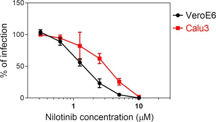 Inhibitory activity of nilotinib in Vero‐E6 and Calu‐3 cells. Cells were infected with SARS‐CoV‐2 and 1 h post‐inoculation treated with serial dilutions of nilotinib. The infection rate was evaluated at 48 hpi for Vero‐E6 and at 24 hpi for Calu‐3 cells. Results are mean and SEM of 3 independent experiments performed in duplicate