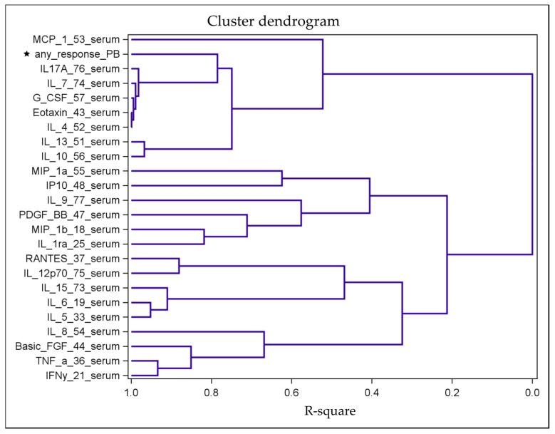 """Tree-structured dendrogram resulting from the hierarchical clustering analysis based on the correlation matrix of all cytokine and response data. The R-square value is the proportion of variance accounted for by the cluster. For example, the variables IL-4, eotaxin, G-CSF, IL-7 and IL-17A represent a cluster of variables with similar correlations with the response variable (""""any_response_PB""""; marked with an asterisk). In contrast, the dendrogram shows a marked distance between the variables IL-6 and IL-8 and the response variable, indicating a weak correlation."""