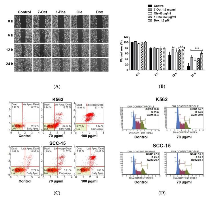 Effect of 7-octenoic acid, oleamide, and 1-phenyl-2-pentanol in vitro cell migration. ( A ) MDA-MB-231 cells were scratch wounded and incubated with compounds, doxorubicin, or complete medium (control). The wound areas were imaged at 0, 6, 12, and 24 h post-scratching. ( B ) Wound area (%) summarized from triplicate data. One-way ANOVA test was performed with multiple comparison corrections (Dunnett test). Data represent the mean ± SEM of three independent experiments. (* p