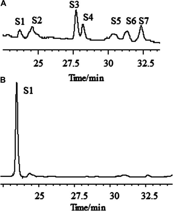 Chromatographic profiles of aqueous extracts of Astragali radix before (A) and after (B) the addition of ammonia, as determined by HPLC–ELSD. [S1: astragaloside IV (AG IV); S2: astragaloside III (AG III) and formononetin; S3: astragaloside II (AG II); S4: isoastragaloside II (iAG II); S5: astragaloside I (AG I); S6: isoastragaloside I (iAG I); S7: acetylastragaloside I.]