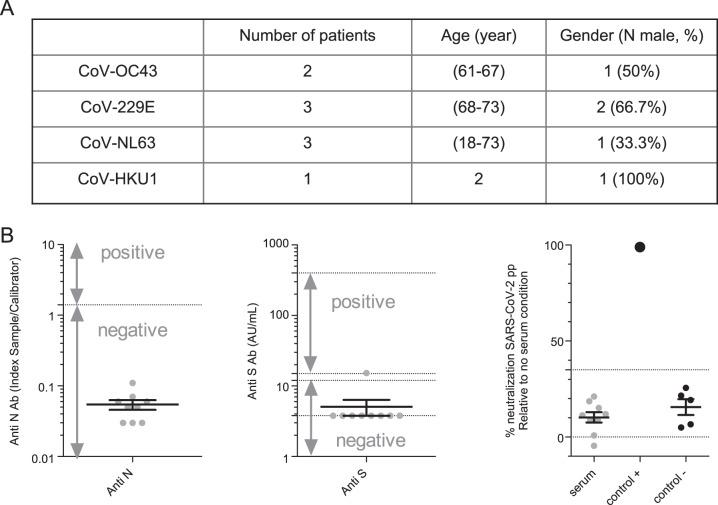 Sera from patients infected by endemic coronaviruses have no cross-neutralizing activity against SARS-CoV-2. A Characteristics of samples from patients infected with other coronaviruses. B Seroconversion assessed by anti-N (left) and anti-S (middle) SARS-CoV-2 or neutralization measured by SARS-CoV-2pp (right). For neutralization assays, a commercial anti-S antibody was used as a positive control (control+) and five prepandemic serum samples were used as a negative control (control−)