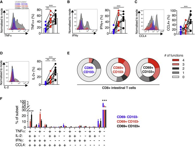 CD103 + CD8 + intestinal T cells demonstrate greater capacity for cytokine production (A–D) Cytokine production by small intestinal CD8 + T cells. Representative histograms of expression, and group summaries of proportion of CD8 + T cells expressing TNF-α (A), IFN-γ (B), CCL4 (C), and IL-2 (D) after 4 h stimulation with PMA and ionomycin in the presence of brefeldin A and monensin, categorized by CD69 and CD103 expression, in small intestinal biopsies from healthy control subjects (n = 10). (E) Mean proportion of CD8 + T cells expressing 0, 1, 2, 3, or 4 of the cytokines/chemokines TNF-α, IFN-γ, CCL4, and IL-2, categorized by CD69 and CD103 co-expression, from small intestinal biopsies from healthy control subjects (n = 10). (F) Mean percentage (± SEM) of CD8 + T cells co-expressing TNF-α, IFN-γ, CCL4, and/or IL-2 after PMA and ionomycin stimulation as described, categorized by CD69 and CD103 expression. Statistical analysis performed with one-way ANOVA with Tukey's multiple-comparison test. ∗ p ≤ 0.05, ∗∗ p ≤ 0.01, ∗∗∗ p ≤ 0.001.