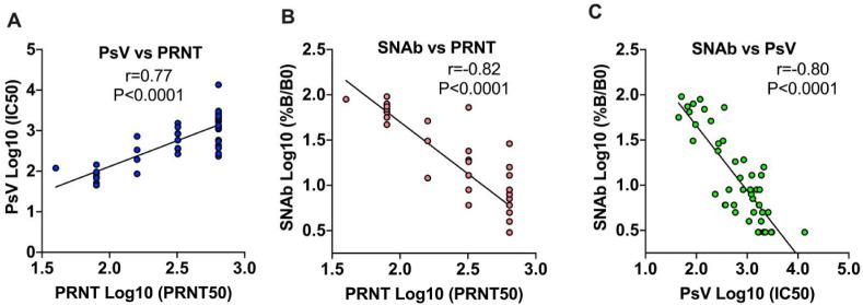 Correlation of the TOP-SNAb assay with two well-established SARS-CoV-2 NAb assays . The correlations between the PsV and PRNT, between TOP-SNAb and PRNT, and between TOP-SNAb and PsV are shown in Fig. 2 A, B, C, respectively. The readout of TOP-SNAb is the percentage of RBD-ACE2 binding, which inversely correlates with the SNAb binding inhibition (neutralizing activity). The titers of PRNT and PsV were reported as PRNT 50 and IC50, respectively. The results were presented as Log10 scale. Correlations between two assays were assessed by Spearman correlation coefficient.