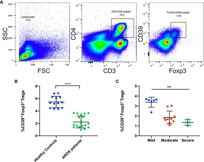 The frequency of CD39 + Tregs are decreased in ARDS patients. (A) Representative FACS analysis shows CD39 + Tregs in the PBMCs in ARDS patients. (B) Analysis of CD4 + Foxp3 + CD39 + Tregs in PBMCs from ARDS patients and healthy donors. (C) Analysis of CD4 + Foxp3 + CD39 + Tregs in different groups of ARDS patients. ** P