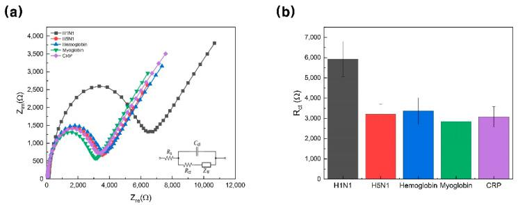 ( a ) Impedance spectra of proposed biosensor with various targets (100 nM), including H1N1 (black line), <t>H5N1</t> (red line), hemoglobin (blue line), myoglobin (green line), and CRP (purple line) in 5 mM [Fe(CN) 6 ] 3−/4− solution in 10 mM HEPES (pH 7.04) containing 1 M KCl. ( b ) Change in charge-transfer resistance based on selectivity test (error bars: standard deviation). CRP, C-reactive protein; HEPES, 4-(2-hydroxyethyl)-1-piperazineethanesulfonic acid.