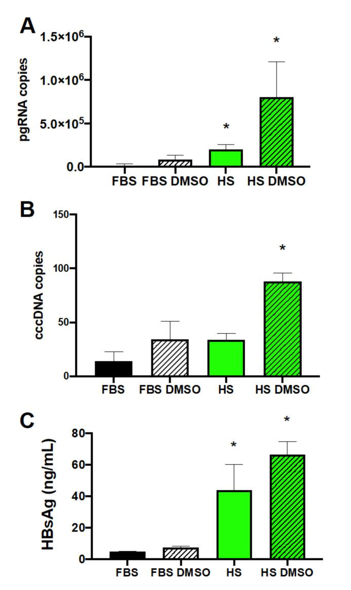 Enhancement of HBV replication by human serum culture. Human serum culture increased HBV ( A ) pgRNA, ( B ) cccDNA, and ( C ) HBV surface antigen (HBsAg) levels from Huh7.5-NTCP cells. Huh7.5-NTCP cells were cultured in the media supplemented with FBS or HS and with or without the addition of DMSO during HBV infection. Samples were collected on day 14 ( A , B ) or day 7 ( C ) post-infection. Pregenomic RNA was measured using RT-qPCR from 10 ng of total RNA. Covalently closed circular DNA was quantified using q-PCR from 10 ng of gDNA. HBsAg was measured in a culture supernatant using enzyme-linked immunosorbent assay (ELISA). Average values with error bars (±SD) derived from three experiments are plotted. One-way analysis of variance (ANOVA) was used with the Bonferroni correction for multiple comparison test. * p