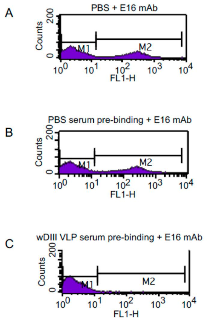 Competitive binding between the E16 mAb and antibodies in anti-HBcAg-wDIII serum to wDIII displayed on the yeast cell surface. wDIII-displaying yeast cells were pre-incubated with PBS ( A ) or week-11 pooled sera (1:1000 dilution) from mice either injected with PBS ( B ) or HBcAg-wDIII VLP ( C ). The E16 mAb was then incubated with yeast cells. The specific binding between E16 and yeast-displayed wDIII was measured by staining with an Alexa Fluor 488-conjugated goat anti-human secondary antibody and processing by flow cytometry.