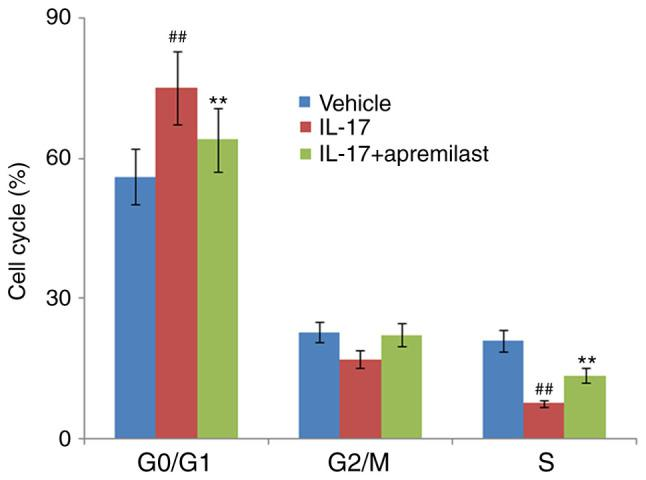 Apremilast prevents IL-17-induced cell cycle arrest in the G0/G1 phase in mouse ATDC5 chondrocytes. Cells were treated with IL-17 (10 ng/ml) in the presence or absence of apremilast (1 µ M) for 7 days. The cell cycle was assayed using flow cytometry. G0/G1 phase, G2/M phase, and S phase of cells were measured. ## P