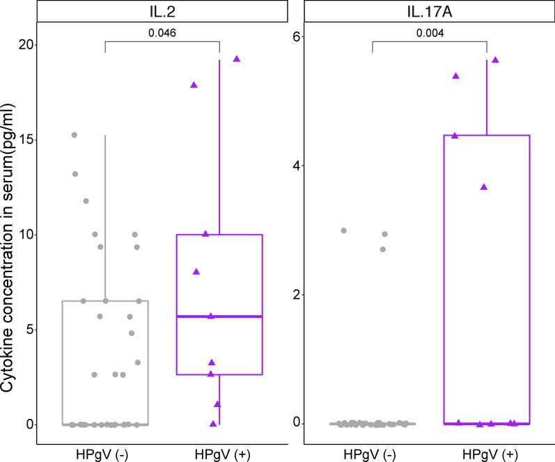 HPgV-1 infection is associated with increased systemic levels of IL-2 and IL-17A. Cytokine, chemokine and growth factors levels were analysed by Luminex and levels compared between HPgV-1 negative (5′ UTR- , grey, n = 35 ) and HPgV-1 positive (5′ UTR + , purple, n = 9) volunteers. Absolute serum concentrations levels (pg/ml) of Interluekin-2 (IL-2) and Interluekin-17A (IL-17A) at samples taken before vaccination are shown. Significantly higher IL-2 and IL-17A are seen in the HPgV-1 + compared to the HPgV-1 − . Wilcoxon rank sum test was used to determine significance ( P value *