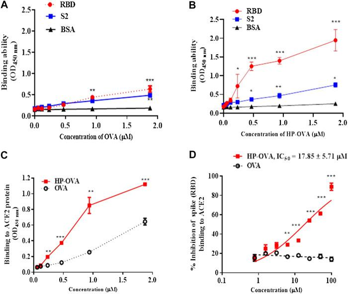 The interaction of HP-OVA with SARS-CoV-2 S and ACE2. The binding of OVA to SARS-CoV-2 spike (RBD), S2 and BSA protein was assessed by ELISA (A) . The binding of HP-OVA to SARS-CoV-2 spike (RBD), S2 and a negative control BSA protein was assessed by ELISA (B) . The binding ability of HP-OVA to ACE2 protein was assessed by ELISA (C) . Inhibition of the interaction between spike (RBD) and ACE2 proteins by HP-OVA, as determined by a competitive inhibition ELISA (D) . Data are presented as the mean ± SD of triplicate samples from a representative experiment (* p