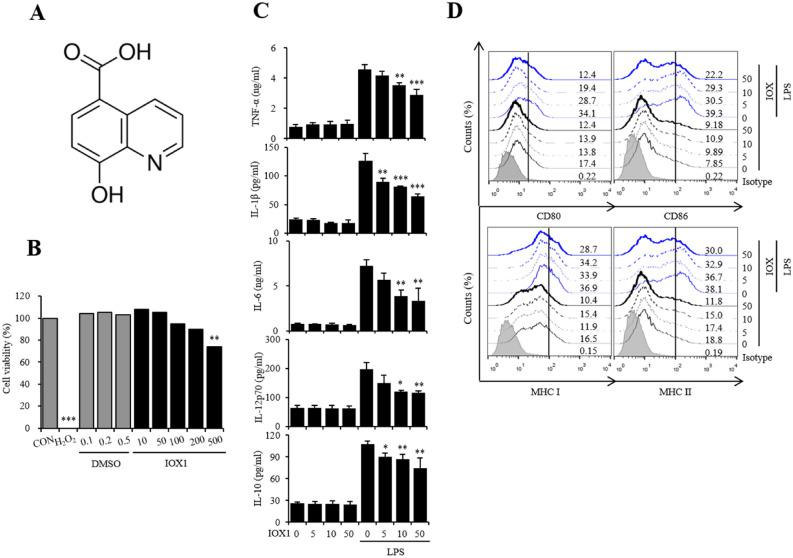 IOX1 suppresses the inflammatory response in LPS-induced DC maturation. ( A ) Chemical structure of IOX1. ( B ) Mouse bone marrow-derived DCs were treated with the indicated concentrations of IOX1, DMSO or H 2 O 2 (negative control) overnight. The cytotoxicity of IOX1 in DCs was analyzed by a Luminescent Cell Viability Kit. ( C ) DCs treated with IOX1 (50 μM) before or after LPS stimulation (50 ng/ml) at the indicated times. Culture medium was collected, and the TNF-α, IL-1β, IL-6, IL-12p70 and IL-10 levels in the medium were determined by ELISA. ( D ) BMDCs were pretreated for 30 min with the indicated concentrations of IOX1 before stimulation with LPS (50 ng/ml) overnight. The surface molecule expression of BMDCs was analyzed by flow cytometry. The results of one representative experiment out of three experiments are shown. Data are presented as the means ± SEMs. * P