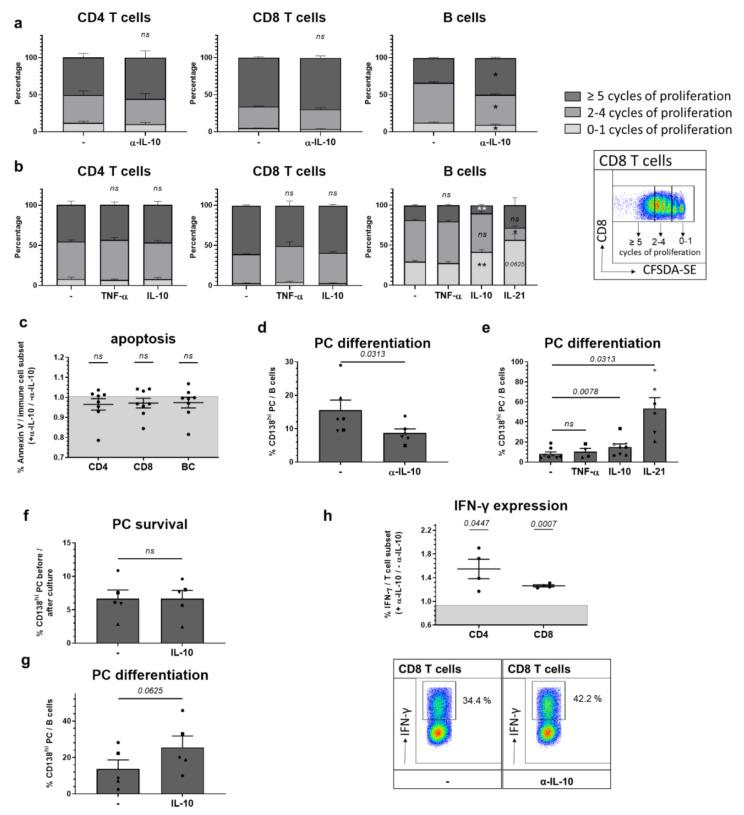 IL-10 in vitro effects on adaptive immune cells. ( a , d ) Splenocytes or ( b , e ) purified CD4, CD8 T cells or CD19 + B cells from 28 week old NZB/W F1 animals with established autoantibodies and beginning nephritis ( n = 4–9 mice) were incubated for 4 days with α-CD3/CD28 (T cell stimulation) or CpG (B cell stimulation), ( a , d ) in the presence or absence of neutralizing α-IL-10 or ( b , e ) in the presence or absence of recombinant mouse IL-10, TNF-α or IL-21. ( a , b ) Proliferation of CD4 T, CD8 T and B cells was examined using CFDA-SE. Depicted is one representative FACS blot showing the proliferation of CD8 T cells and gating strategy to quantify cells with 0–1, 2–4 or ≥5 cycles of proliferation. The mean percentages ± SEM of cells with 0–1, 2–4 or ≥5 cycles of proliferation from 6 ( a ) and 4–9 ( b ) independent donors are expressed as stacked bars. The p value was calculated using a Wilcoxon test with paired data analysis to determine the difference between α-IL-10-treated and untreated cells ( a ) or the difference between untreated cells and those treated with IL-10, IL-21 or TNF-α ( b ) (* p