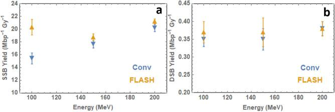 ( a ) Single-strand break yields and ( b ) double-strand break yields for 100–200 MeV electron beam irradiation of wet <t>pBR322</t> plasmid DNA based on data fitting to the McMahon fit 32 . Plasmids irradiated at Conventional (~ 0.5 Gy/s) and FLASH ( > 10 8 Gy/s) dose rates.