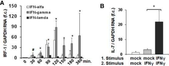 Interferon-response factor-1 (IRF1) transcription exaggerates interferon (IFN)-induced <t>interleukin-7</t> <t>(IL-7)</t> expression. (A) Quantification of IRF-1 mRNA levels relative to housekeeping GAPDH mRNA in Huh-7.5 cells, which were treated for the indicated time points with IFN-α (500 i.E./ml), IFN-γ (5 ng/ml), or IFN-λ2 (50 ng/ml). IRF-1 mRNA levels relative to housekeeping GAPDH mRNA are expressed relative to untreated cells. Standard deviations of three experiments (n=3) performed with three replicates each are shown. * P