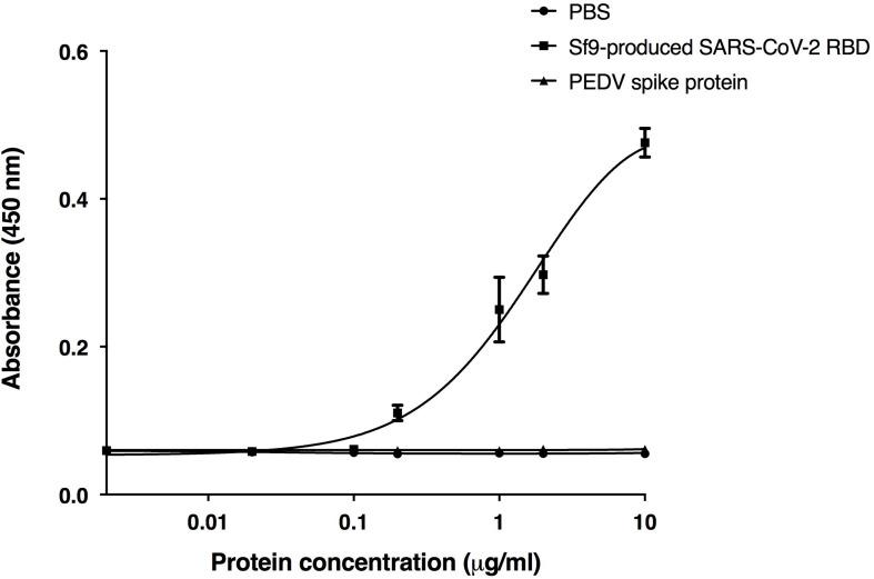 Binding activity of the plant-produced ACE2-Fc with the commercial receptor binding domain of SARS-CoV-2 (SARS-CoV-2 RBD) from Sf9 cells was analyzed by ELISA. PBS buffer and S1 protein of PEDV were used as negative controls. Data are presented as mean ± SD of triplicates.