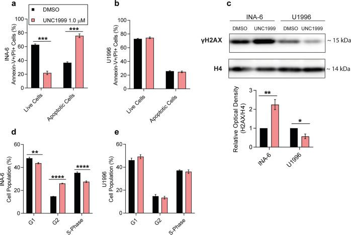 Sensitivity to EZH2 inhibition was associated with DNA damage, G2 arrest and apoptosis. a – b Flow cytometry analysis of apoptotic markers in ( a ) INA-6 and ( b ) U1996 cells upon UNC1999 treatment. c Representative western blot against γH2AX in INA-6 and U1996 cells and signal quantification of the western blot. Optical density was normalized against H4. The corresponding uncropped western blots can be found in Supplementary Fig. 9d . d – e Flow cytometry analysis of the cell cycle in ( d ) INA-6 and ( e ) U1996 cells upon UNC1999 treatment. Statistical analysis was performed with one-way ANOVA and multiple t-test. All experiments were performed in three biological replicates. Values: mean with SEM. * p
