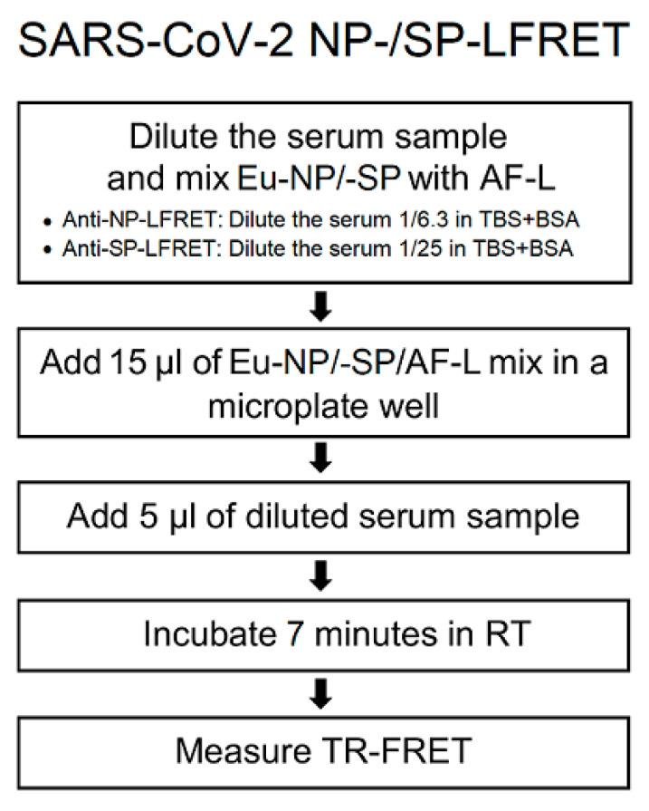Simplified protocol for SARS-CoV-2 NP and SP LFRET assay. Eu-NP/-SP = Europium-labeled nucleoprotein/spike glycoprotein. AF-L = Alexa Fluor™ 647 -labeled protein L. TR-FRET = time-resolved Förster resonance energy transfer. RT = room temperature. TBS+BSA (50 mM Tris-HCl, 150 mM NaCl, pH 7.4, 0.2% BSA) was used for all dilutions. On-plate dilutions were 5 nM Eu-NP/500 nM AF-L/serum 1/25 for anti-NP and 5 nM Eu-SP/250 nM AF-L/serum 1/100 for anti-SP LFRET. For further details see the prior publication [ 5 ].