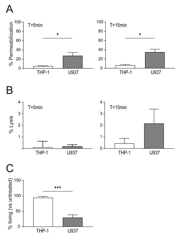 Increased sensitivity to lysenin of U937 versus THP-1 cells. ( A ) Equal numbers of U937 and THP-1 cells were stimulated with 13.75 ng lysenin/10 6 cells and cell permeabilization was monitored using <t>propidium</t> iodide influx after 5 min (left panel) or 15 min (right panel) post toxin addition by FACS; ( B ) cells were stimulated with 13.75 ng lysenin/10 6 cells and cell lysis after 5 min (left panel) and 15 min (right panel) were analyzed by FACS; ( C ) cells were stimulated 32 ng lysenin/10 6 cells for 30 min. Subsequently, the unbound toxin was removed and the cells were recovered in full RPMI media for 24 h. Percentages of living cells at T = 24 h were assessed using the Alamar blue ® assay. Mean ± SEM is shown (n = 3, * p