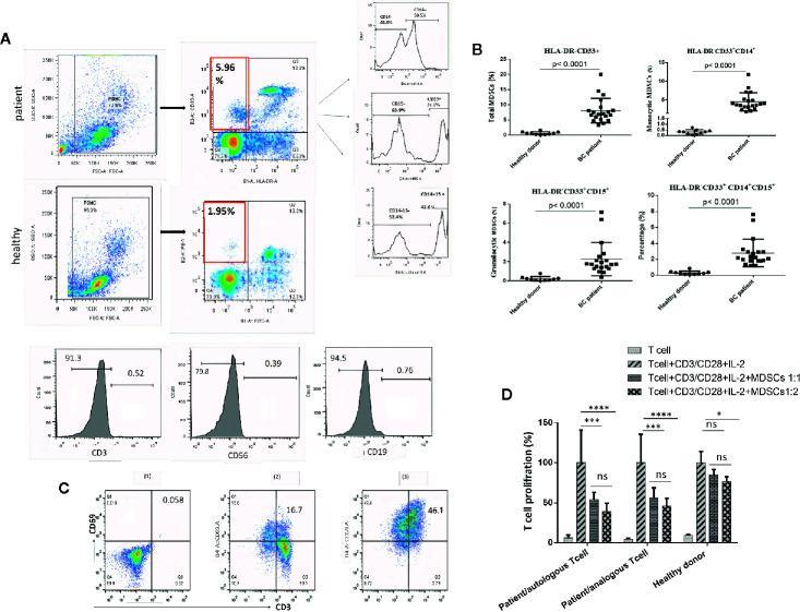 Circulating HLA‐DR ‐ CD33 + myeloid‐derived suppressor cells in BC patients. The frequencies and phenotypes of the studied MDSCs in patients' blood samples and healthy cases were assessed using multi-color flow cytometry. (A) Shows the characterization and quantification of MDSCs as the HLA‐DR -/low CD33 + population and as a percentage of gated cells via supplying a minimum of 10,000 live events per sample. Histogram plots also indicate the expression rate and percentages of the positive cells for surface markers (CD14 and CD15) on gated HLA‐DR -/low CD33 + cells. HLA‐DR -/low CD33 + cells were negative for the expression of lineage markers CD3, CD19, and CD56. (B) Percentages of MDSC subpopulations, including total MDSCs, monocytic MDSCs, and granulocytic MDSCs in peripheral blood of the study groups ( P