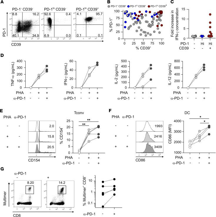PD-1 hi CD39 + CD4 Tconv TILs encompass tumor Ag–specific cells and respond to PD-1 blockade by enhancing DC-mediated CD8 T cell proliferation. ( A – C ) Ex vivo isolated CD4 + TILs from one OC NY-ESO-1–seropositive patient were FACS-sorted into PD-1 – CD39 – , PD-1 hi CD39 – , and PD-1 hi CD39 + CD4 Tconv (CD3 + CD4 + CD25 - CD127 + ) subsets and cloned. ( A and B ) Clonal populations were stained and analyzed by flow cytometry. ( A ) PD-1 versus CD39 expression in clones representative of the 3 sorted Tconv populations. ( B ) Proportions of PD-1 + and CD39 + cells are summarized for all clones derived from PD-1 – CD39 – ( n = 54), PD-1 hi CD39 – ( n = 17), and PD-1 hi CD39 + ( n = 22) subsets. ( C ) IFN-γ concentration in the supernatant was quantified by ELISA for each clone stimulated with NY-ESO-1 peptide pool (fold increase over unstimulated condition) ( n as in B ). ( D – F ) Ex vivo CD4 + TILs (± anti–PD-1 mAbs pretreatment) were cocultured with iDCs in the presence or absence of PHA. ( D ) TNF-α, IFN-γ, IL-2, and IL-12 concentrations were quantified by CBA in the 24-hour supernatants ( n = 3). ( E ) Histogram plots show CD154 expression in CD4 Tconvs after 6-hours stimulation. Proportions of CD154 + cells are summarized ( n = 5). ( F ) Histogram plots show CD86 expression in DCs in day 2 cultures. MFI of CD86 staining are summarized ( n = 4). ( G ) CD4 + TILs from OC NY-ESO-1–seropositive patients (± anti–PD-1 mAbs pretreatment); autologous iDCs and circulating CD8 T cells were cocultured in the presence of NY-ESO-1 peptides, stained with MHC-I/NY-ESO-1 peptide multimers on day 10, and analyzed by flow cytometry. Examples of dot plots show multimer staining and CD8 expression and proportions of multimer + CD8 + cells are summarized ( n = 5). A 2-tailed paired t test was used to compare variables ( E and F ). Bonferroni's correction was applied to account for multiple testing ( E and F ) and significance level was adjusted accordingly (* P