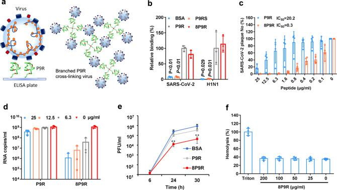 The enhanced antiviral activity of branched P9R (8P9R). a The schematic figure of single P9R binding to single viral particle and branched P9R (8P9R) cross-linking viruses together. b The binding of 8P9R and P9R to SARS-CoV-2 and H1N1 viruses. Peptides coated on ELISA plates could capture virus particles which were then quantified by RT-qPCR. P9RS was the negative control peptide with no viral binding ability. Relative binding and P values were compared to P9R. Data are presented as mean ± SD of three independent experiments. c SARS-CoV-2 was pretreated with the indicated peptides for plaque reduction assay. Data are presented as mean ± SD of four independent experiments. d SARS-CoV-2 was treated by indicated peptides (25 μg ml −1 ) during viral inoculation. Viral RNA copies were detected by RT-qPCR at 24 h post infection in the supernatant of Vero-E6 cells. Data are presented as mean ± SD of three independent experiments. e SARS-CoV-2 was treated by peptides (50 μg ml −1 ) at 6 h post infection. Viral titers were measured at the indicated time by plaque assay. Data are presented as mean ± SD of three independent experiments. P values were compared with BSA. f Hemolysis assay of 8P9R in turkey red blood cells (TRBC). TRBC were treated by the indicated concentration of 8P9R. Hemolysis (%) was normalized to TRBC treated by Triton X-100. Data are presented as mean ± SD three independent experiments. P values are calculated by two-tailed student t test. ** indicates P