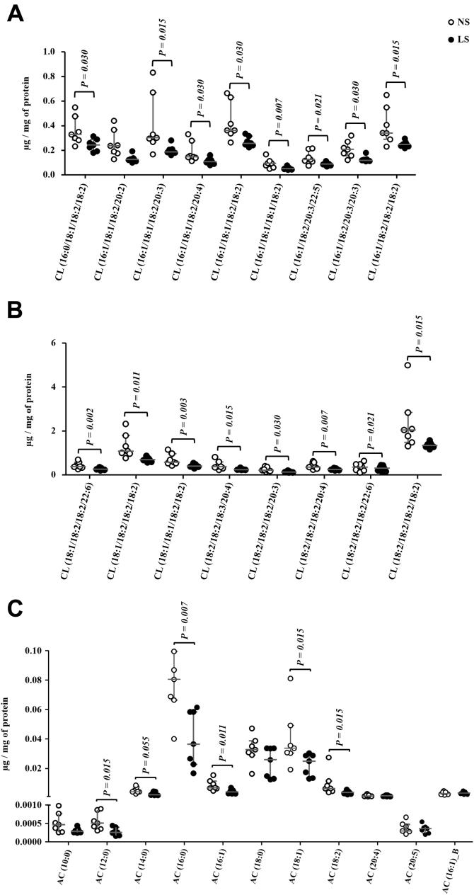 A and B, Cardiopilin (CL) species identified in the gastrocnemius. The lipid extract of the gastrocnemius excised from LDLR KO male mice fed either a normal (NS; n = 7) or a low-sodium diet (LS; n = 7) was subjected to a global lipidomic analysis performed with high-resolution mass spectrometry, UHPLC-MS/MS coupled to ESI-Q-TOF-MS. CL species were separated in panels A and B according to their size, A ) 0.0 to 1.0 and B ) 0.0 to 6.0 μg/mg of protein. C , acylcarnitines (AC) species identified in the gastrocnemius. The lipid extract of the gastrocnemius excised from LDLR KO male mice fed either a normal (NS; n = 7) or a low-sodium diet (LS; n = 7) was subjected to a global lipidomic analysis performed with high-resolution mass spectrometry, LC-MS/MS coupled to ESI-Q-TOF-MS. Values expressed as median (interquartile range) were compared by the Mann–Whitney test.