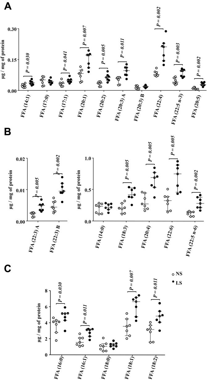 Free fatty acids (FFA) species identified in the gastrocnemius. The lipid extract of the gastrocnemius excised from LDLR KO male mice fed either a normal (NS; n = 7) or a low-sodium diet (LS; n = 7) was subjected to a global lipidomic analysis performed with high-resolution mass spectrometry, ultra-high-performance liquid chromatography coupled to mass spectrometry coupled to ESI-Q-TOF-MS. FFA species were separated in panels A – C according to their size, A ) 0.0 to 0.3, B ) 0.0 to 0.02 and 0.0 to 1.0, C ) 0.0 to 8.0 μg/mg of protein. Values expressed as median (interquartile range) were compared by the Mann–Whitney test.