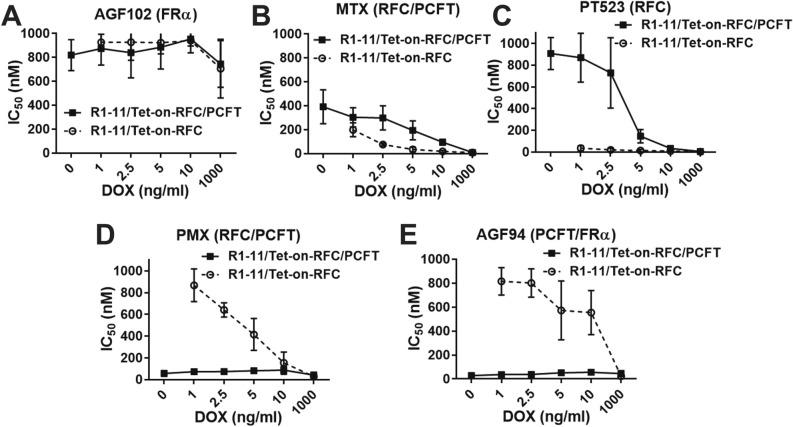 Impact of RFC/PCFT redundancy on drug sensitivity. R1-11/Tet-on-RFC or R1-11/Tet-on-RFC/PCFT cells were plated in 96-well culture plates (4000 cells/well; 200 μl/well) with complete FF RPMI 1640 including 10% dialyzed FBS supplemented with 25 nM LCV. Drugs with different transport specificities were added, with concentrations from 1 to 1000 nM for AGF102 ( A ), MTX ( B ), PT523 ( C ), PMX ( D ), and AGF94 ( E ). Cells were treated over a range of DOX concentrations (0, 1, 2.5, 5, 10 and 1000 ng/ml) and incubated from 96 to120 h (depending on the growth of the cell models) at 37 °C in a CO 2 incubator. Cell viabilities were measured with a fluorescence-based viability assay (CellTiter-Blue; Promega) and a fluorescence plate reader (emission at 590 nm, excitation at 560 nm) for calculating the drug concentrations that inhibit growth by 50% (IC 50 ). Results are shown as mean IC 50 values + /− SDs from 4 to 15 separate experiments.