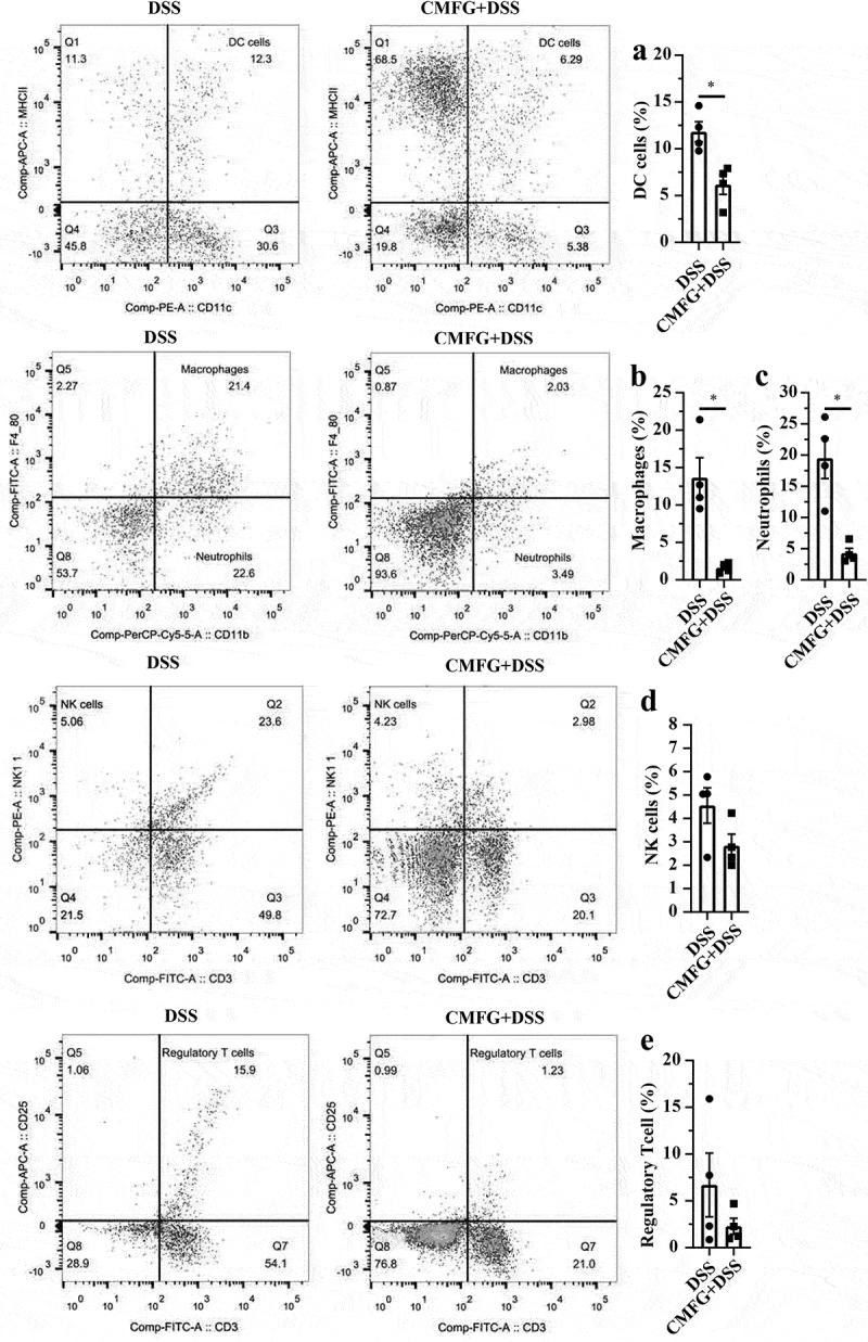 Prophylactic CMFG intervention altered the frequency of colon-infiltrating immune cells in colonic tissues. Representative plot of DC cells (a), Macrophages (b), Neutrophils (c), NK cells (d), and Treg cells (e) in the colonic tissues from DSS and CMFG + DSS groups. Asterisks denote significant differences (* p ≤ 0.05), n = 4 per group, data are represented as mean ± SEM