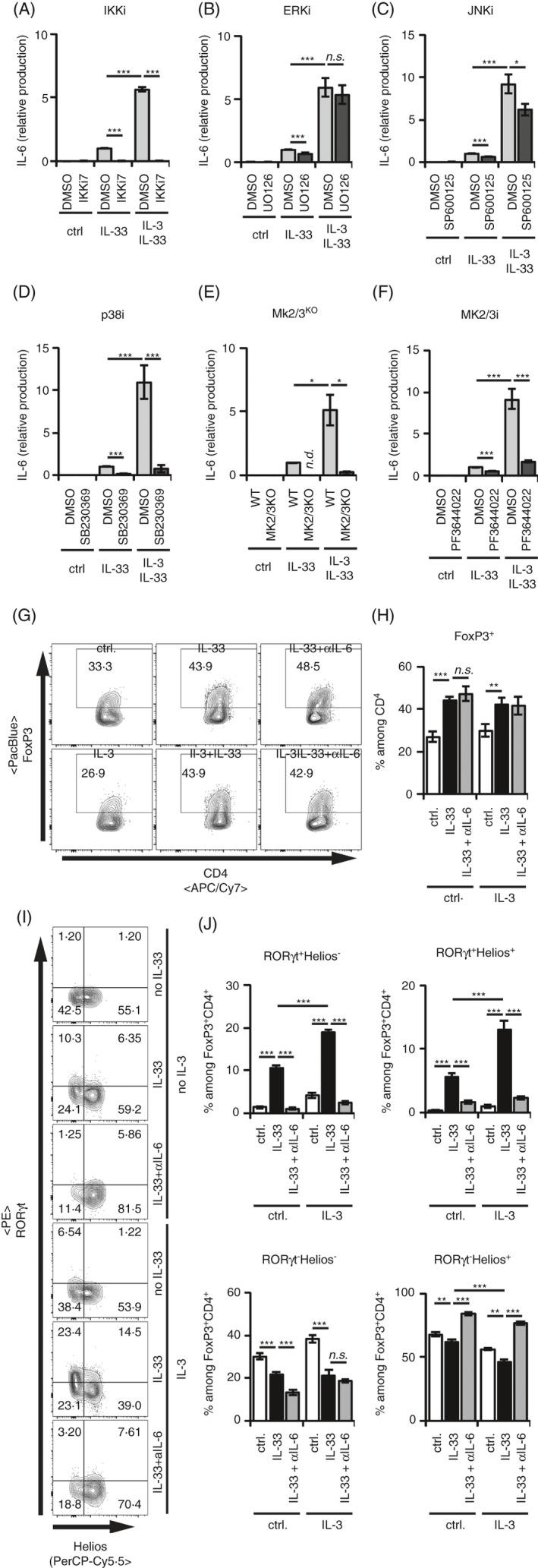 IL‐3‐enhanced IL‐33‐induced RORγt + T reg generation at the expense of RORγt − Helios + T regs is dependent on IKK2 and on the p38‐MK2/3 module. (A‐F) BMMCs were cultured in medium alone or with 50 ng/ml recombinant IL‐33 for 24 h. IL‐6 levels in the supernatants were analysed by ELISA. If indicated, BMMCs were costimulated with 50 ng/ml recombinant IL‐3. All data points were normalized to IL‐33‐induced levels of IL‐6. Data are pooled from independent BMMC cultures. (A) Preincubation of the BMMC with IKKi7 ( n = 4). (B) Preincubation of the BMMC with UO126 ( n = 17). (C) Preincubation of the BMMC with SP600125 ( n = 15). (D) Preincubation of the BMMC with SB203580 ( n = 10). (E) MK2/3 dKO BMMCs were used ( n = 4). (F) Preincubation of the BMMC with PF3644022 ( n = 18). (G‐J) CD25 + CD4 + splenic T regs were cocultured with BMMCs in medium ± 50 ng/ml recombinant IL‐33 alone for 3 days. If indicated, 50 ng/ml recombinant IL‐3 or blocking anti‐IL‐6 antibody was added. Transcription factor expression of FoxP3 among CD4 + , and RORγt and Helios among FoxP3 + CD4 + T regs was analysed by flow cytometry in 2 independent experiments with BMMCs from 8 independent donors. (G) Representative FACS plots show FoxP3 + cells among CD4 + Th cells. (H) Diagram summarizes FoxP3 + cells among CD4 + Th cells. (I) Representative FACS plots of RORγt + and Helios + cells among FoxP3 + CD4 + T regs . (J) Diagrams summarize RORγt + Helios − , RORγt + Helios + , RORγt − Helios + and RORγt − Helios − cells among FoxP3 + CD4 + T regs . Diagrams show average values of all experiments ± SEM. Statistics were done with Student's t‐ test: n.s . not significant; * p