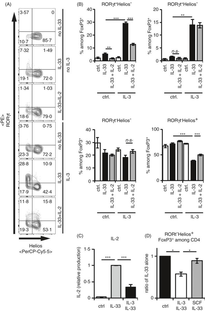 IL‐3 blocks the IL‐33‐induced IL‐2 production by BMMC, which selectively enhances the RORγt − Helios + T reg maintenance. (A, B) CD25 + CD4 + splenic T regs were cocultured with BMMCs in medium ± 50 ng/ml recombinant IL‐33 alone for 3 days. If indicated, 50 ng/ml recombinant IL‐3 or 50 ng/ml recombinant IL‐2 was added. Transcription factor expressions of FoxP3 among CD4 + , and RORγt and Helios among FoxP3 + CD4 + Tregs were analysed by flow cytometry in 2 experiments with BMMCs from 6 independent donors. (A) Representative FACS plots of RORγt + and Helios + cells among FoxP3 + CD4 + T regs . (B) Diagrams summarize RORγt + Helios − , RORγt + Helios + , RORγt − Helios + and RORγt − Helios − cells among FoxP3 + CD4 + T regs . (C) BMMCs were cultured in medium alone or with 50 ng/ml recombinant IL‐33 for 24 h. IL‐2 levels in the supernatants were analysed by ELISA. If indicated, BMMCs were costimulated with 50 ng/ml recombinant IL‐3. All data points were normalized to IL‐33‐induced levels of IL‐2. Data were summarized from 4 independent experiments with BMMC of 19 independent donors. (D) Splenic CD25 + CD4 + T regs were cocultured with BMMCs in medium ± 50 ng/ml recombinant IL‐33 alone for 3 days. If indicated, 50 ng/ml recombinant IL‐3 or 50 ng/ml recombinant SCF was added. Transcription factor expressions of RORγt and Helios among FoxP3 + CD4 + Tregs were analysed by flow cytometry in 2 experiments with BMMCs from 3 independent donors. Ratio of RORγt − Helios + Tregs among Th cells related to conditions with IL‐33 alone is shown. Diagrams show average values of all experiments ± SEM. Statistics were done with Student's t‐ test: n.s . not significant; * p