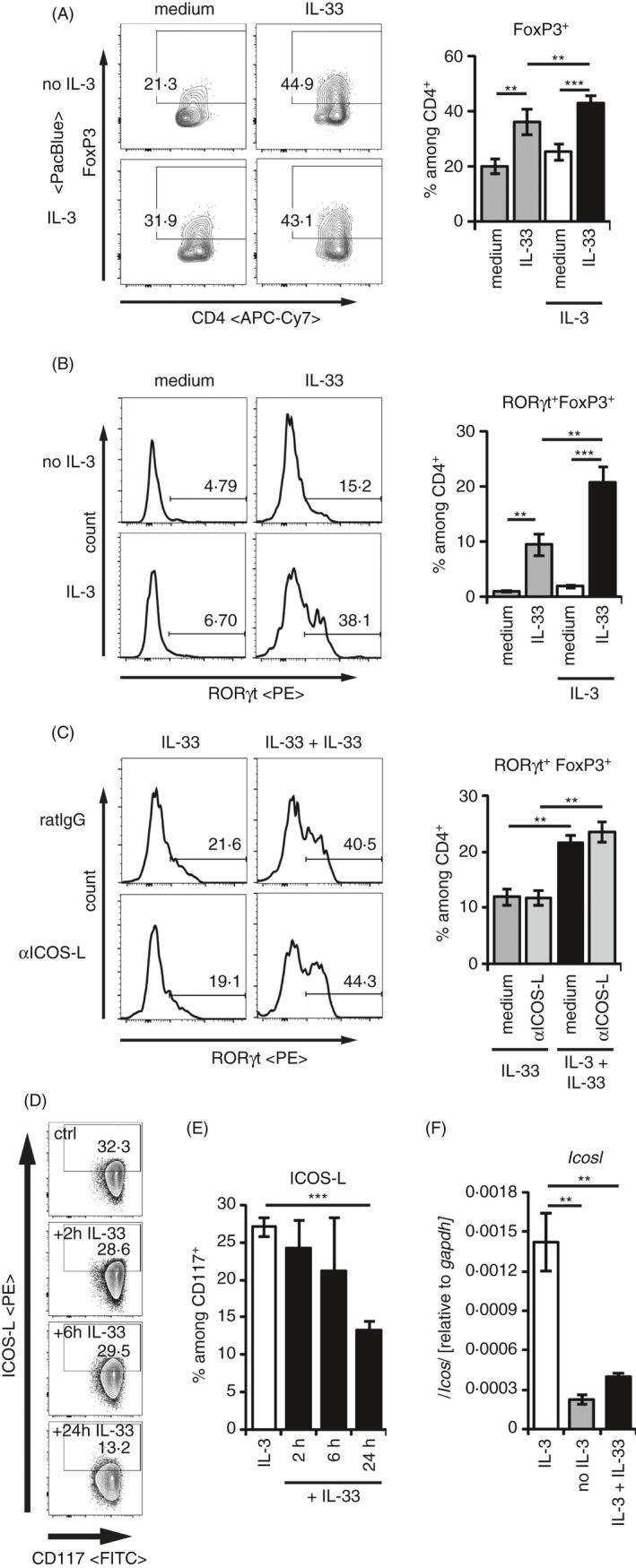 IL‐3 enhances the IL‐33‐induced RORγt + T reg development independent from ICOS‐L. (A‐C) CD25 + CD4 + splenic T regs were cocultured with BMMCs in medium ± 50 ng/ml recombinant IL‐33 alone, or in the presence of 50 ng/ml recombinant IL‐3 ± 50 ng/ml recombinant IL‐33 for 3 days. Transcription factor expression of FoxP3 among CD4 + , and RORγt among FoxP3 + CD4 + T regs was analysed by flow cytometry. Representative FACS plots and histograms are shown in the right panels. Diagrams on the right summarize data from separate experiments representing BMMCs from n > 10 biologically independent donors. (A) FoxP3 + cells among CD4+ Th cells. (B) RORγt + FoxP3 + expression among CD4 + Th cells. (C) RORγt + FoxP3 + expression among CD4 + Th cells in the presence of blocking anti‐ICOS‐L antibody. (D, E) BMMCs were cultured in the presence of recombinant 50 ng/ml IL‐3 ( n = 12 different donors) and 50 ng/ml IL‐33 for 2 ( n = 2 different donors), 6 ( n = 2 different donors) or 24 h ( n = 12 different donors). Frequencies of ICOS‐L + cells were analysed among CD117 + BMMCs by flow cytometry. (D) Representative FACS plots. (E) Data from all cultures of BMMCs are summarized. (F) BMMCs were cultured in medium ( n = 6), medium containing 50 ng/ml recombinant IL‐3 alone ( n = 6) or with additional 50 ng/ml recombinant IL‐33 ( n = 3). Transcript levels of Icosl and Gapdh were quantified by qRT‐PCR after 24 h. Relative expressions of Icosl related to Gapdh are summarized from the indicated numbers of independent biological replicates. Diagrams show average values of all experiments ± SEM. Statistics were done with Student's t‐ test: n.s . not significant; * p