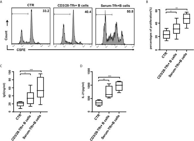 Tfh cells after stimulation of HBV-ACLF patients' serum induced the proliferation and IgG production of B cells in vitro . (A, B) Naïve CD4 + T cells stimulated with the RPMI complete medium (CTR), with or without dynabeads ® human T-activator CD3/CD28 and HBV-ACLF patients' serum, were cultured with naïve B cells in the presence of a surperantigen. The proliferation of CD19 + B cell in the CFSE dilution assay was evaluated quantitatively by comparing the percentages of cells that underwent cell division at least once. (C, D) IgG production (C) and IL-21 release (D) were dosed in the culture supernatants through ELISA. Representative data of independent experiments are shown as median (range). * p