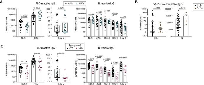 Older age is associated with lower circulating antibodies reactive with SARS-CoV-2 and eCoV RBD and N antigens. Quantification of IgG reactive to RBD of NL63, HKU1, and SARS-CoV-2 and N of NL63, 229E, OC43, HKU1, and CoV-2 in pre-pandemic samples regrouped based on HIV (A) or SLE (B) disease status or age (C) . Statistical analyses were performed using an unpaired non-parametric Mann-Whitney t-test.
